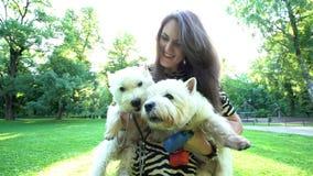 Vrouw die twee huisdieren doggies in haar handen houden onder zonlicht Handbediend schot stock videobeelden