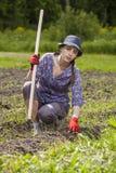 Vrouw die wegetables planten royalty-vrije stock fotografie
