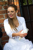 Vrouw die witte vogel houden Stock Foto's