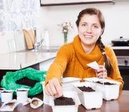 Vrouw die zaden in potten planten Stock Foto's