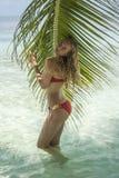 Vrouw die zich dichtbij de palm bevinden Stock Afbeelding