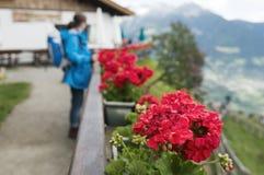 Vrouw die zich door de bloemen bevinden Stock Afbeelding