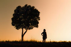 Vrouw die zich onder een boom bevinden Royalty-vrije Stock Foto's