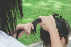 Vrouw die zwart haar van weinig leuk kind in paardestaartstijl binden met elastiekje bij openbaar park stock foto