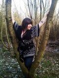 Vrouw in een boom Stock Afbeeldingen