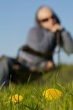 Vrouw in een Weide stock fotografie