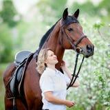 Vrouw en baaipaard in appeltuin Portret van paard en mooie dame Royalty-vrije Stock Afbeelding
