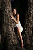 Vrouw en boom Stock Afbeeldingen