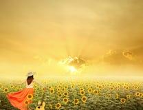 Vrouw en gitaar die zich op zonnebloemgebieden bevinden met zonsondergang stock afbeelding