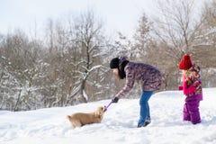 Vrouw en haar daugtherspel met hond in sneeuwbos stock afbeeldingen
