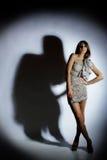 Vrouw en haar schaduw Stock Afbeelding