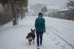 Vrouw en hond die in de sneeuw lopen stock afbeeldingen