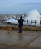 Vrouw en hond het letten op verpletterende golven van een de winteronweer Stock Foto's