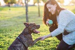 Vrouw en hond het schudden hand en poot Royalty-vrije Stock Foto's