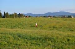 Vrouw en Hond in Platteland stock foto's