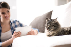 Vrouw en kat in de woonkamer Stock Afbeeldingen