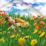 Vrouw en kat die in gras op een weide liggen royalty-vrije stock foto