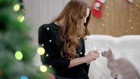 Vrouw en kat phinx bij de Kerstmisdecoratie stock footage