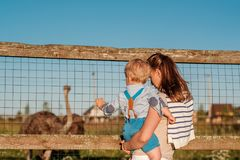 Vrouw en kind die bij landbouwbedrijf struisvogel bekijken Royalty-vrije Stock Foto