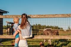 Vrouw en kind die bij landbouwbedrijf struisvogel bekijken Royalty-vrije Stock Foto's