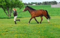Vrouw en paard Royalty-vrije Stock Foto's