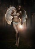 Vrouw-engel Royalty-vrije Stock Foto