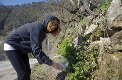 Vrouw in herbes stock foto