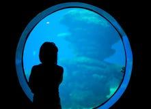 Vrouw in het aquarium Royalty-vrije Stock Fotografie