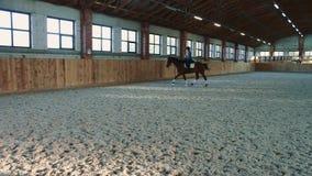 Vrouw het berijden paard snel op arena stock footage