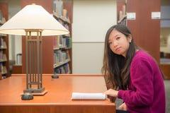Vrouw het bestuderen Royalty-vrije Stock Foto