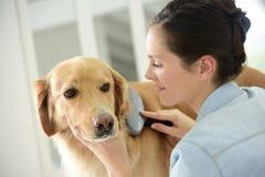 Vrouw het borstelen het haar van de hond Stock Afbeelding