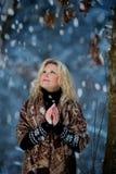 Vrouw in het bos van de sneeuwwinter Stock Afbeeldingen