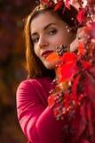 Vrouw in het de herfstpark Stock Foto's