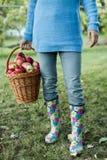 Vrouw het dragen mandhoogtepunt van appelen Royalty-vrije Stock Foto's