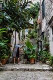 Vrouw het geven ingemaakte installaties in Dubrovnik, Kroatië Stock Afbeeldingen