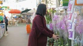 Vrouw het Kopen Bloemen in een Zonovergoten Tuinwinkel 4K Jonge vrouw die voor decoratieve installaties op zonnige floristisch wi stock videobeelden