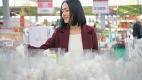 Vrouw het Kopen Bloemen in een Zonovergoten Tuinwinkel 4K Jonge vrouw die voor decoratieve installaties op zonnige floristisch wi stock video