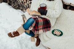 Vrouw het ontspannen op een de winterdag Stock Fotografie