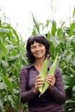 Vrouw het oogsten Stock Fotografie