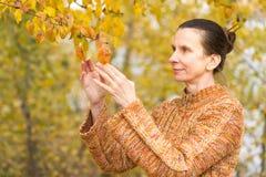 Vrouw het Plukken Bladeren in de Herfst royalty-vrije stock foto