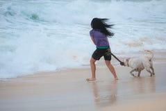 Vrouw het spelen met hond halende stok Royalty-vrije Stock Afbeelding