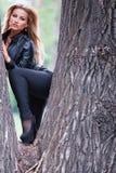 Vrouw het stellen op boomboomstam stock foto