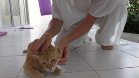 Vrouw leuk strijken weinig kat in openlucht stock video