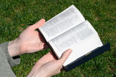 Vrouw-lezing-bijbel Stock Afbeeldingen