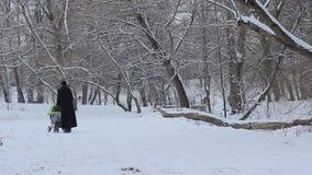 Vrouw met Babywandelwagen op Sneeuwpark stock video