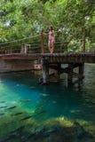 Vrouw met bikinitribunes op de brug, Boniter, Brazilië Stock Afbeeldingen