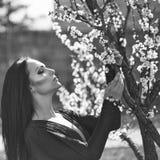 Vrouw met bloeiende abrikoos Stock Foto's