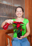 Vrouw met de bloem van de Ster van Kerstmis royalty-vrije stock foto