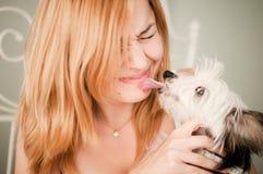 Vrouw met een leuke kleine hond Stock Afbeeldingen