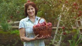 Vrouw met een mand van appelen stock videobeelden
